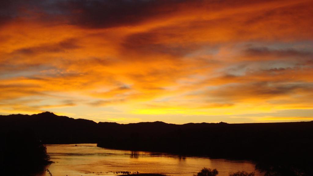 Colorado River Oasis