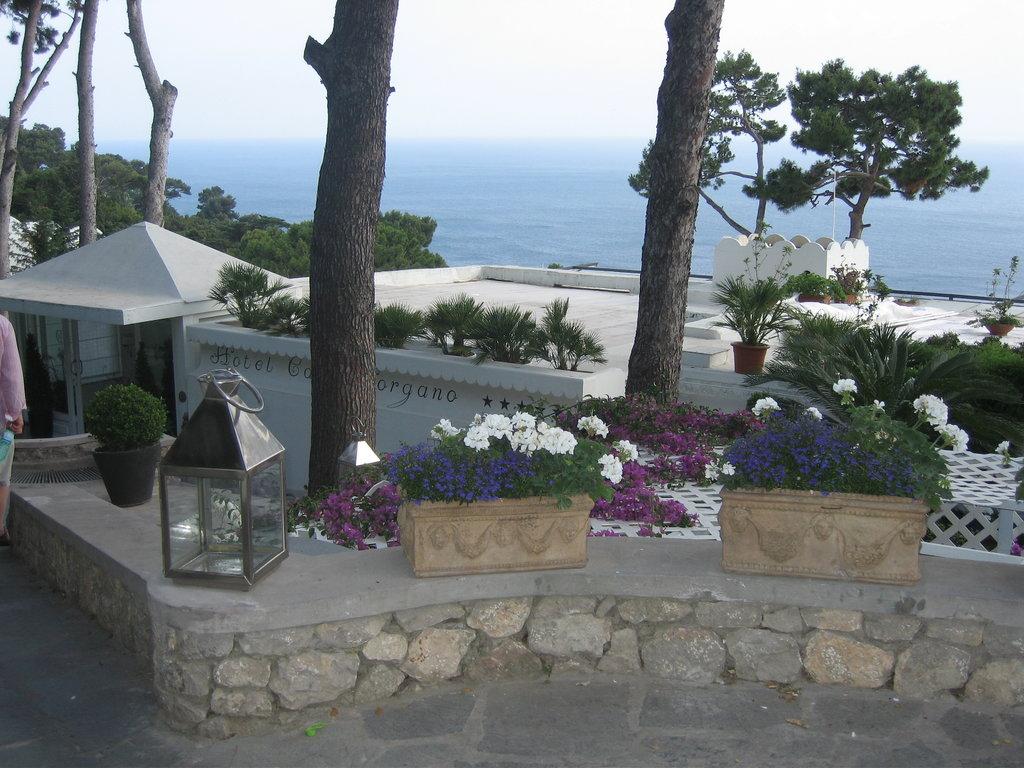 호텔 카사 모르가노