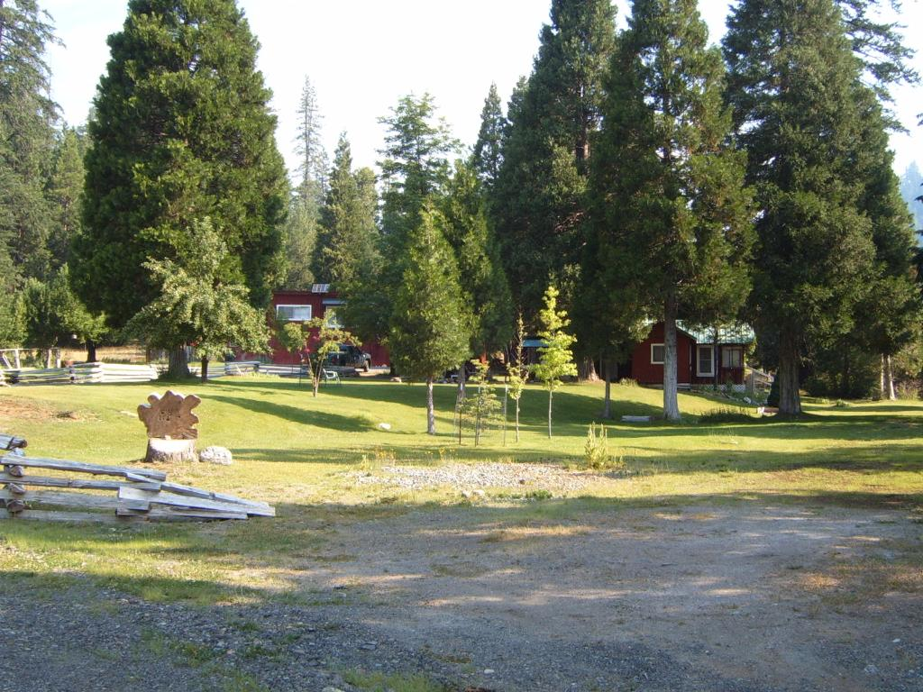 Sunflower Cabins