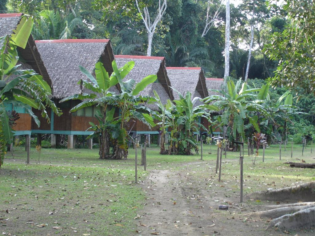 Tambo Jungle Lodge