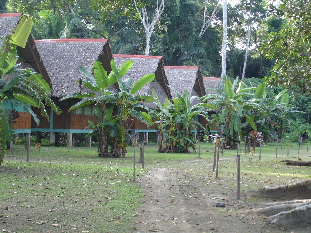 Tambo Jungle Lodge
