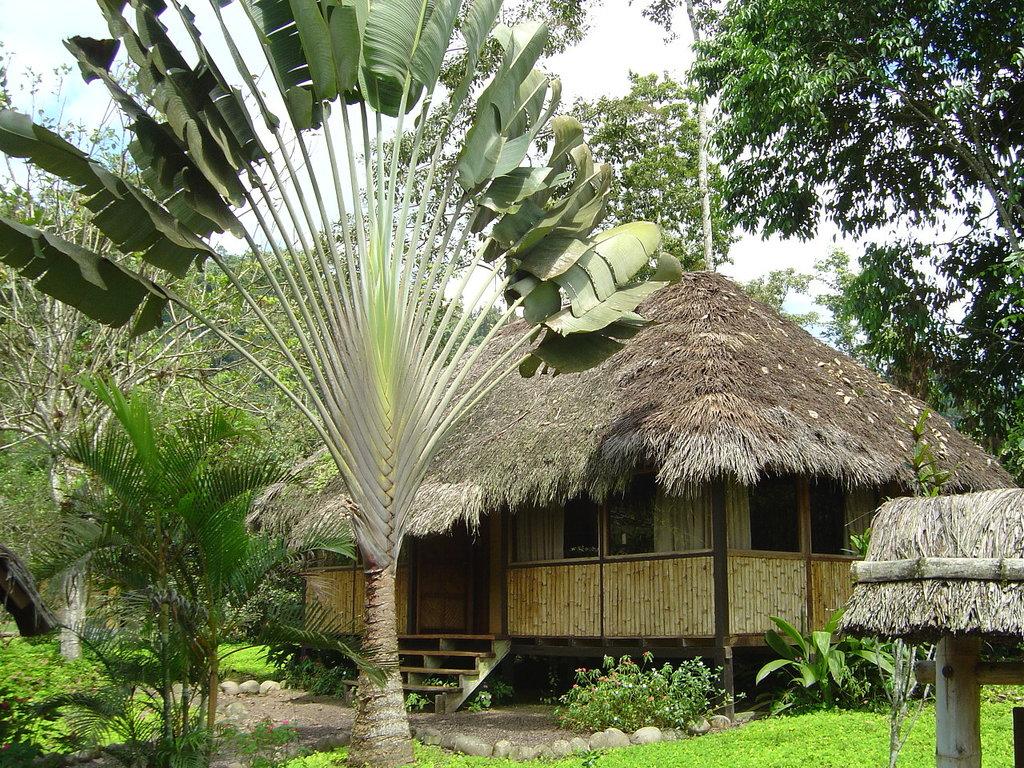 Kaony Lodge