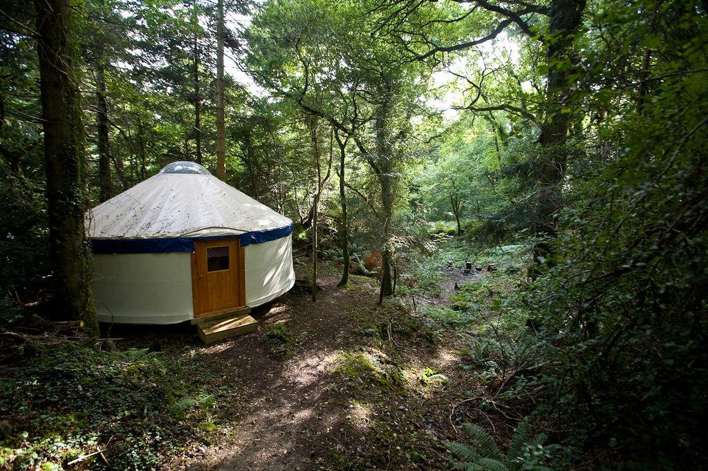 Yurtcamp Devon