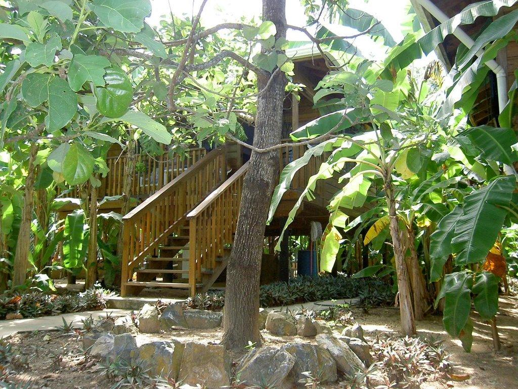 Hidden Garden Cabins