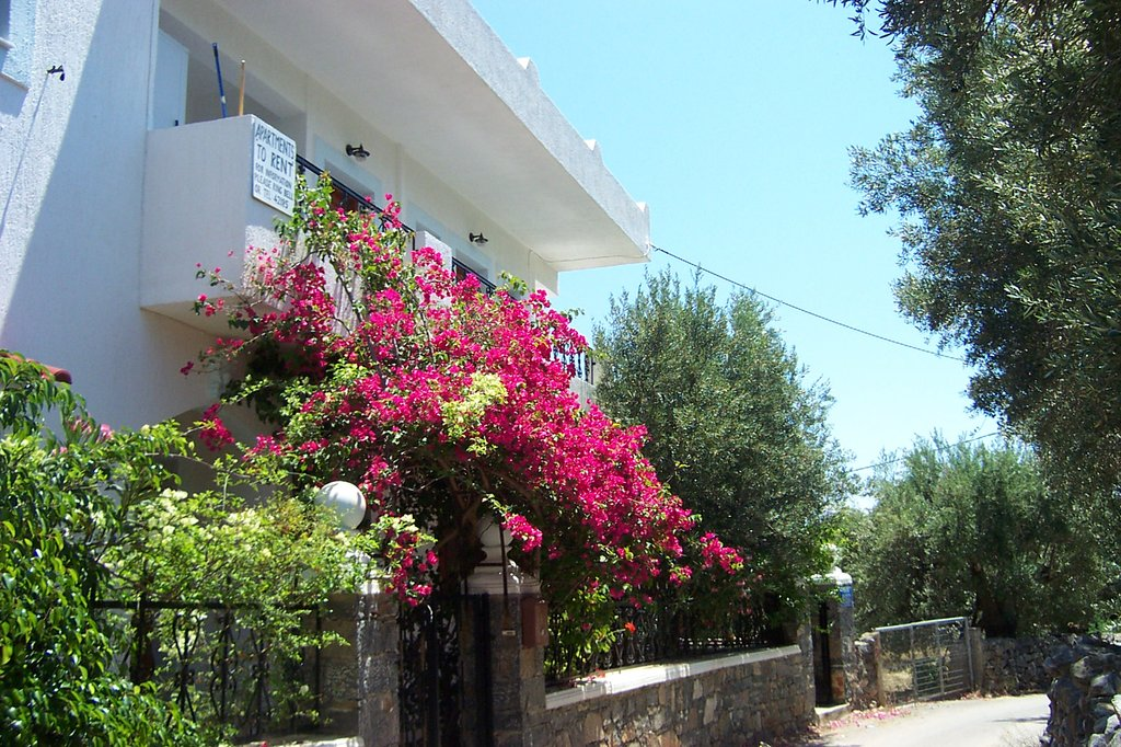 Janet's Apartments Elounda