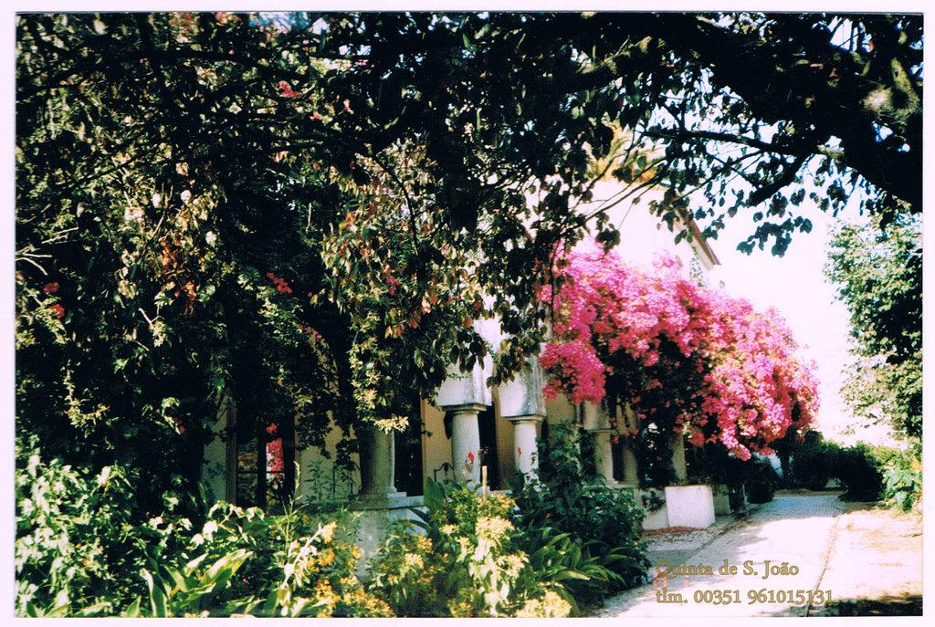 Quinta de Sao Joao