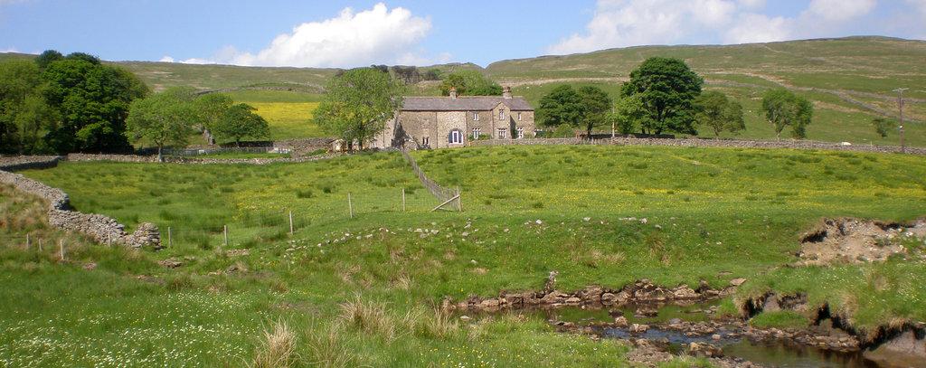 Nethergill Farm