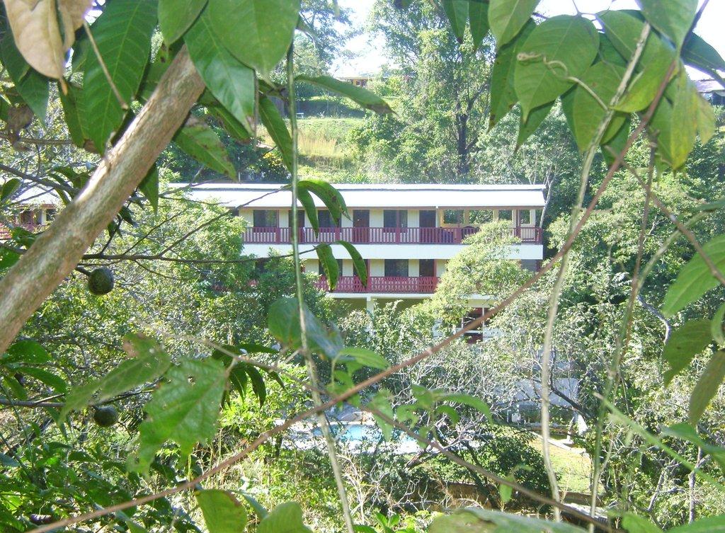 Bosque Zuma Lodge