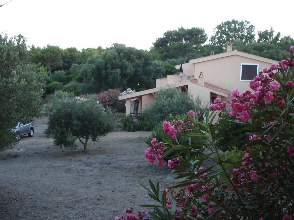Residence Club Peonia Rosa