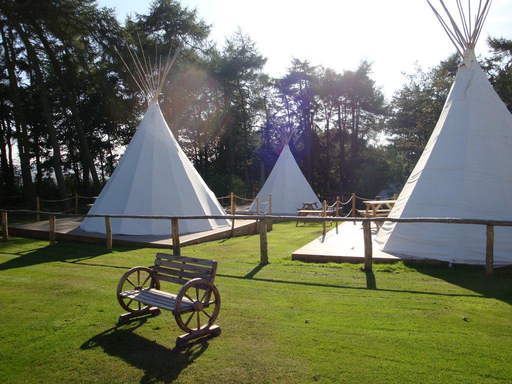 Pinewood Holiday Park