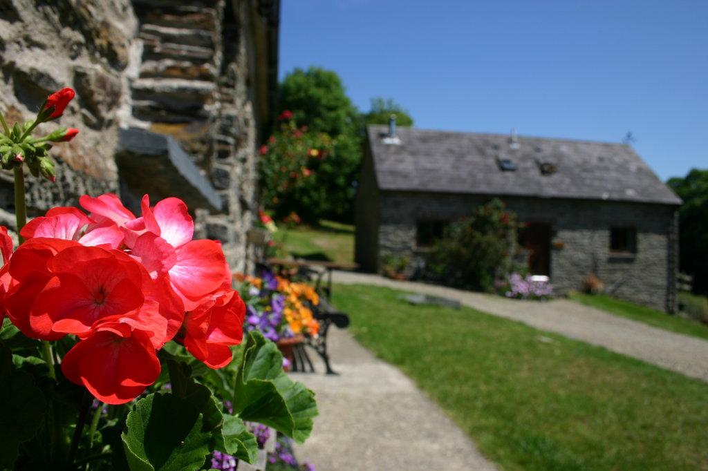 Troedyrhiw Holiday Cottages
