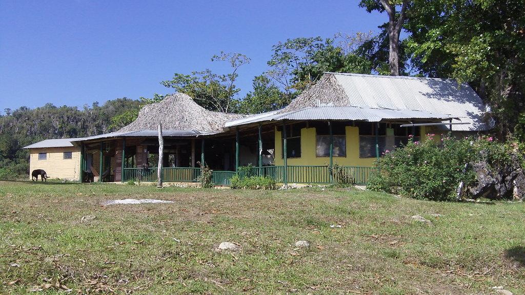 Baboo's Garden