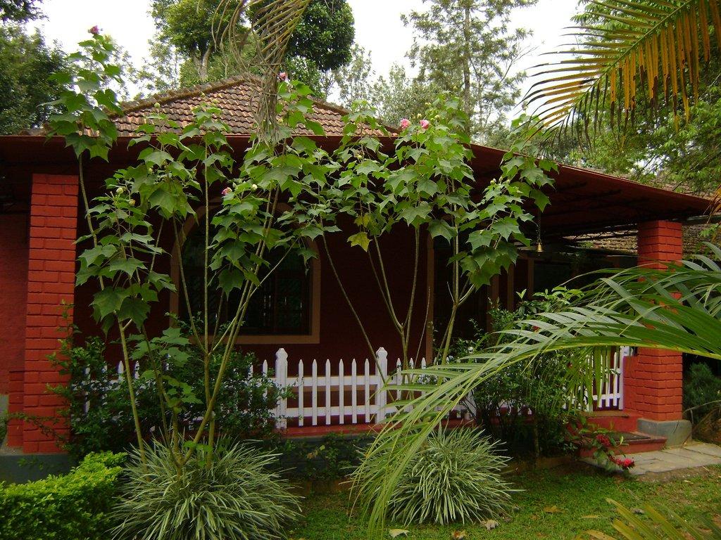 Vindhyas Homestay