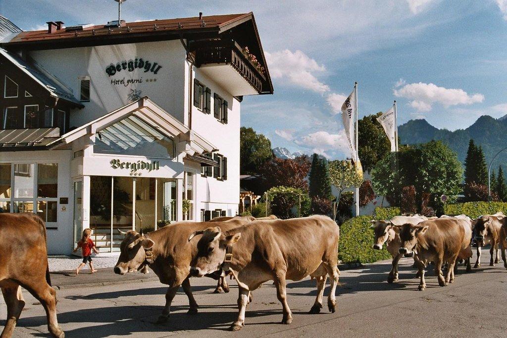 Hotel Garni Bergidyll