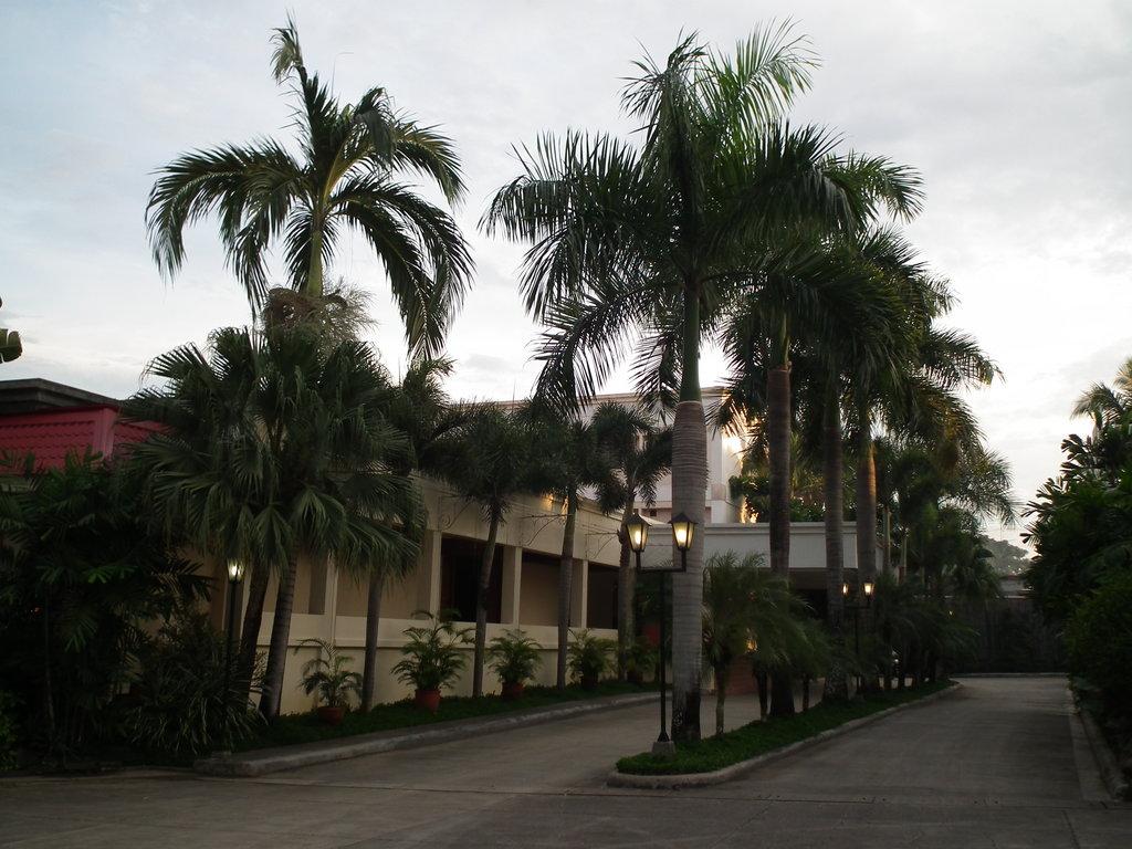 Hacienda de Palmeras