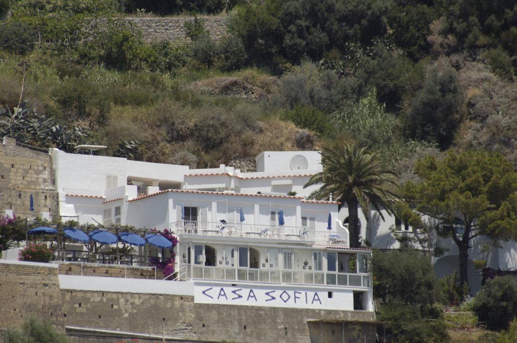 Hotel Casa Sofia