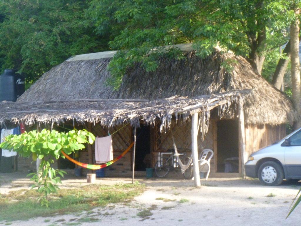 Pepes Cabanas Surf Camp
