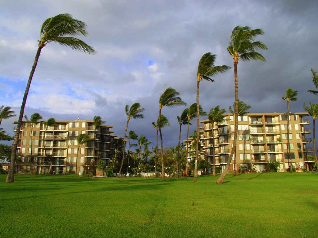Kauhale Makai, Village by the Sea