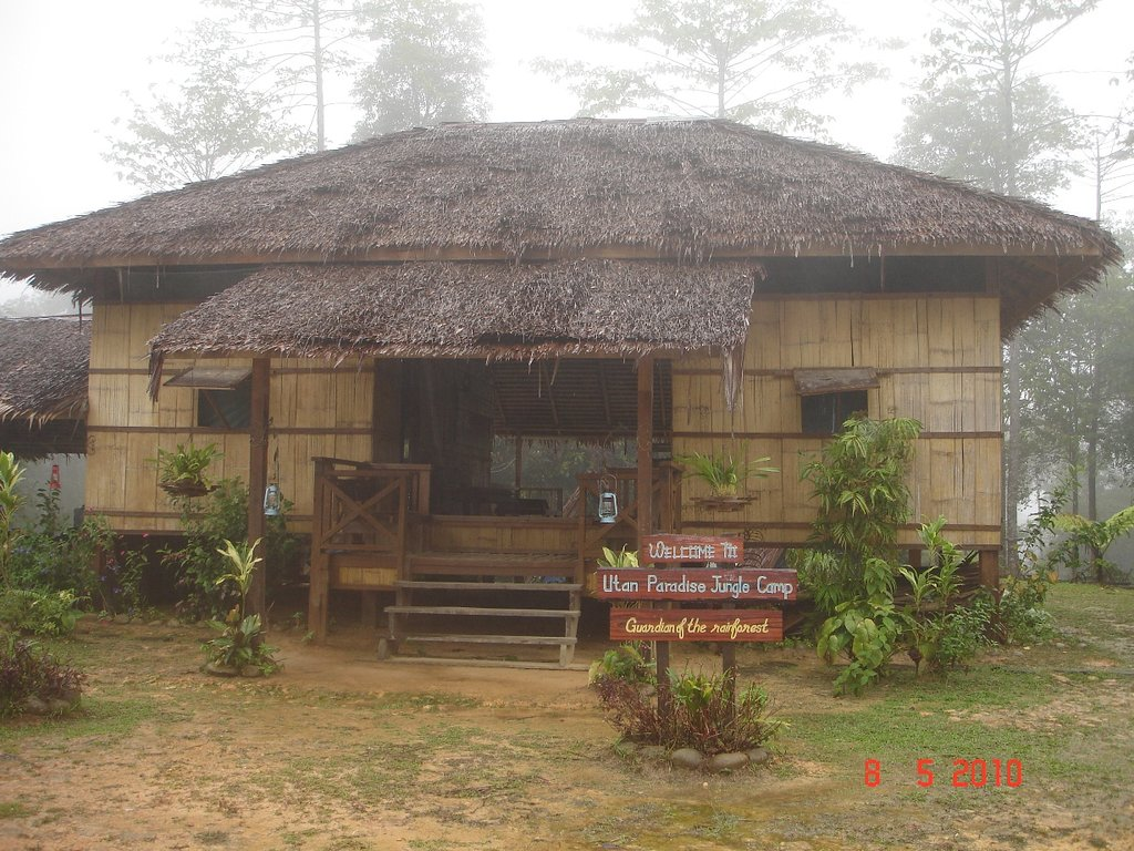 Utan Paradise Jungle Camp