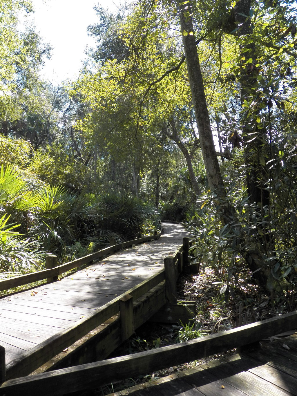Things To Do in Ocala National Forest, Restaurants in Ocala National Forest