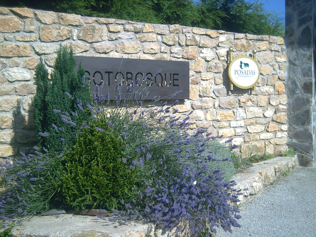 Posada Sotobosque