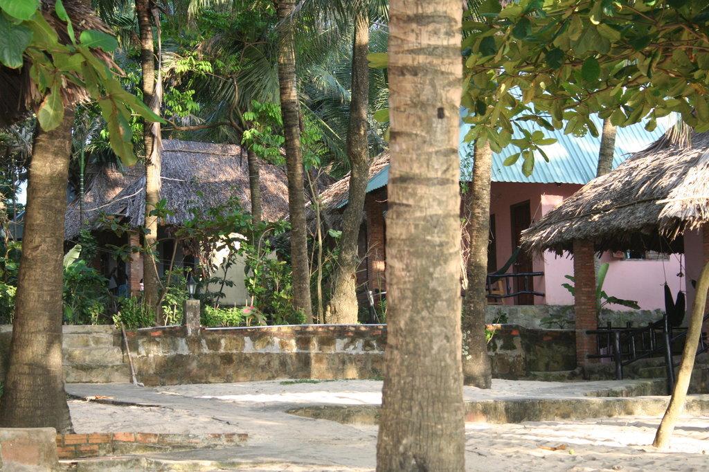 Nhat Lan