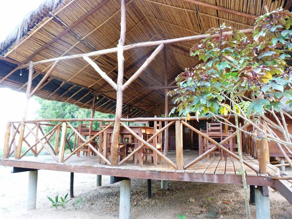 Camp Croco