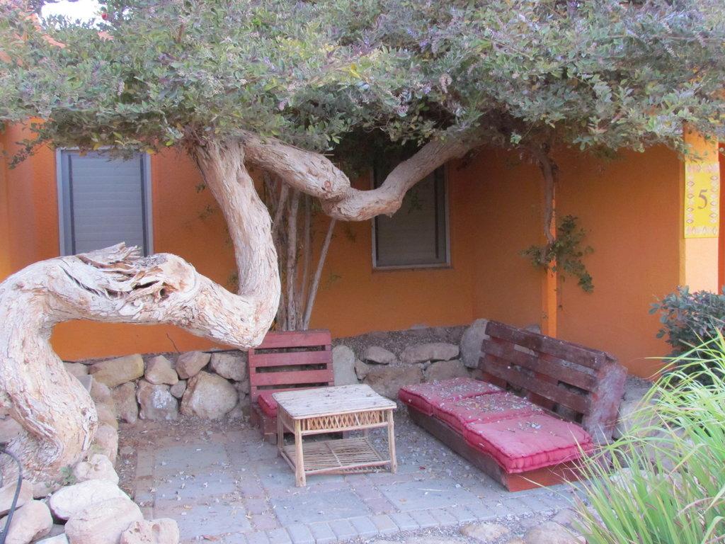 The Cactus Village - Kibbutz Elifaz