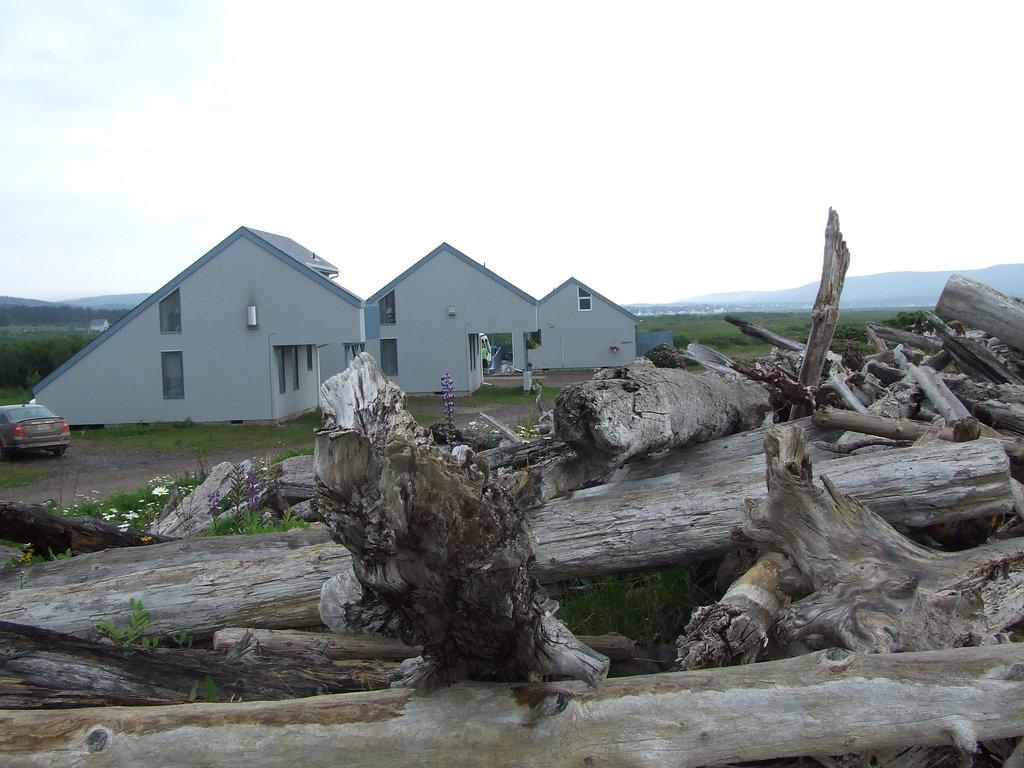 Driftwood Park Retreat