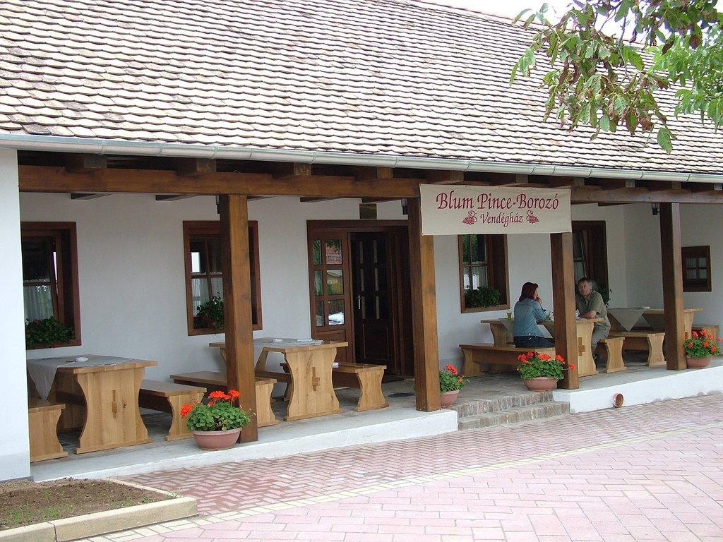Blum - Pince Borozo Vendeghaz