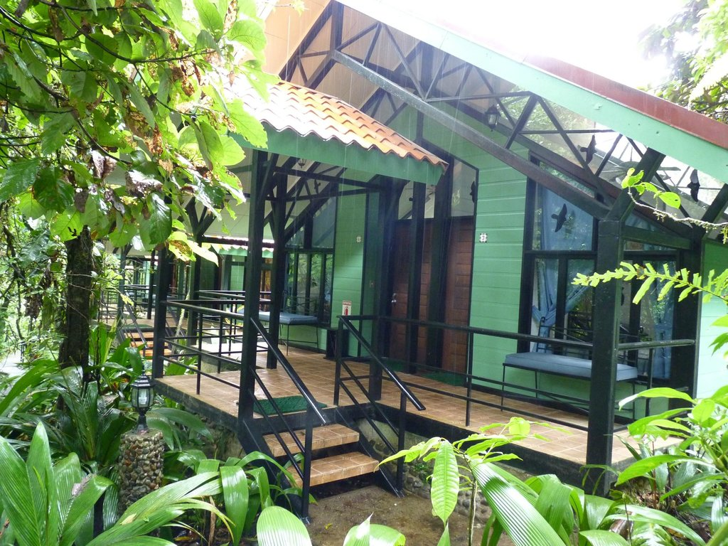 Rainforest Adventure Lodge