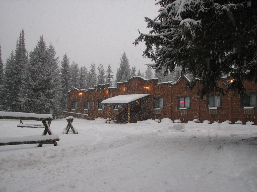 Montana Pines Motel