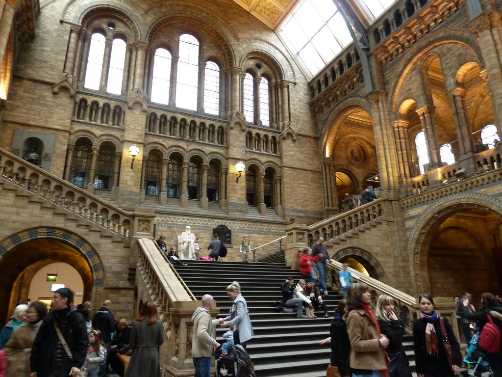 natural history museum london 2019 all you need to know before