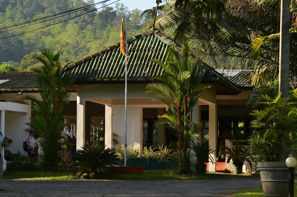 Kithulgala Rest House