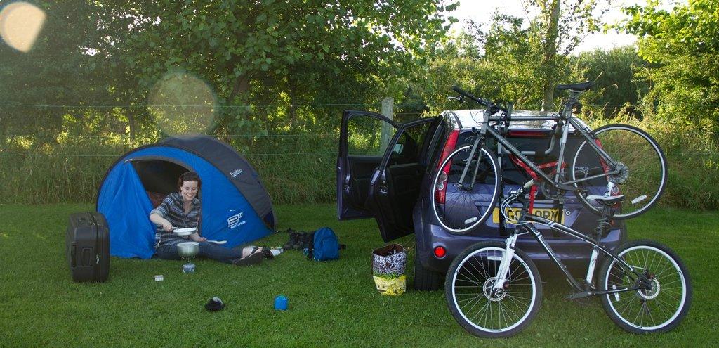 Tree Grove Camping Park