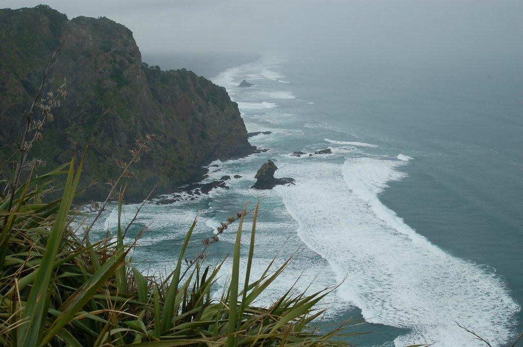 Piha Ocean Lookout