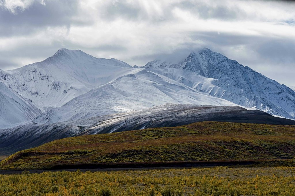 Denali National Park Campgrounds