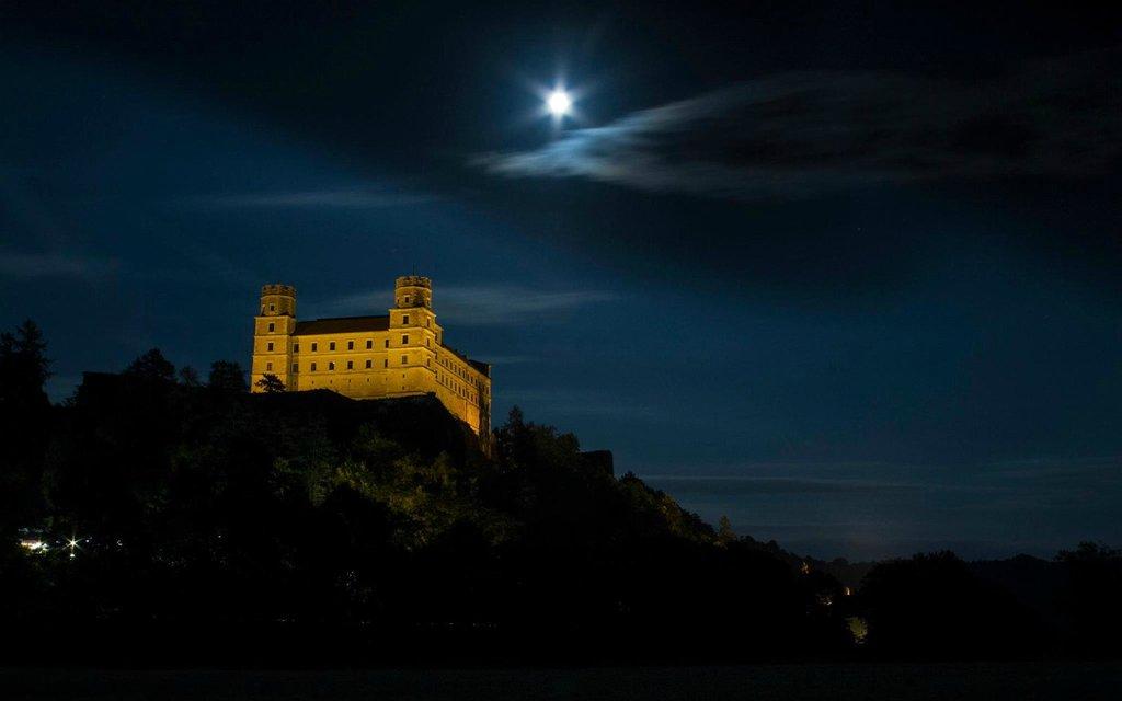Castle Willibaldsburg