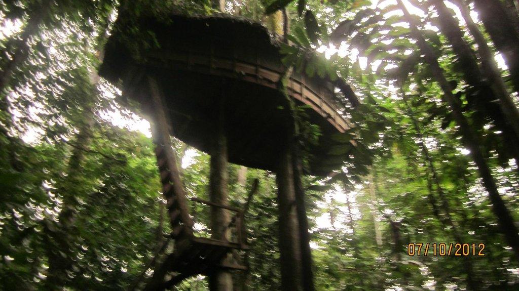 Reserva Natral Tanimboca