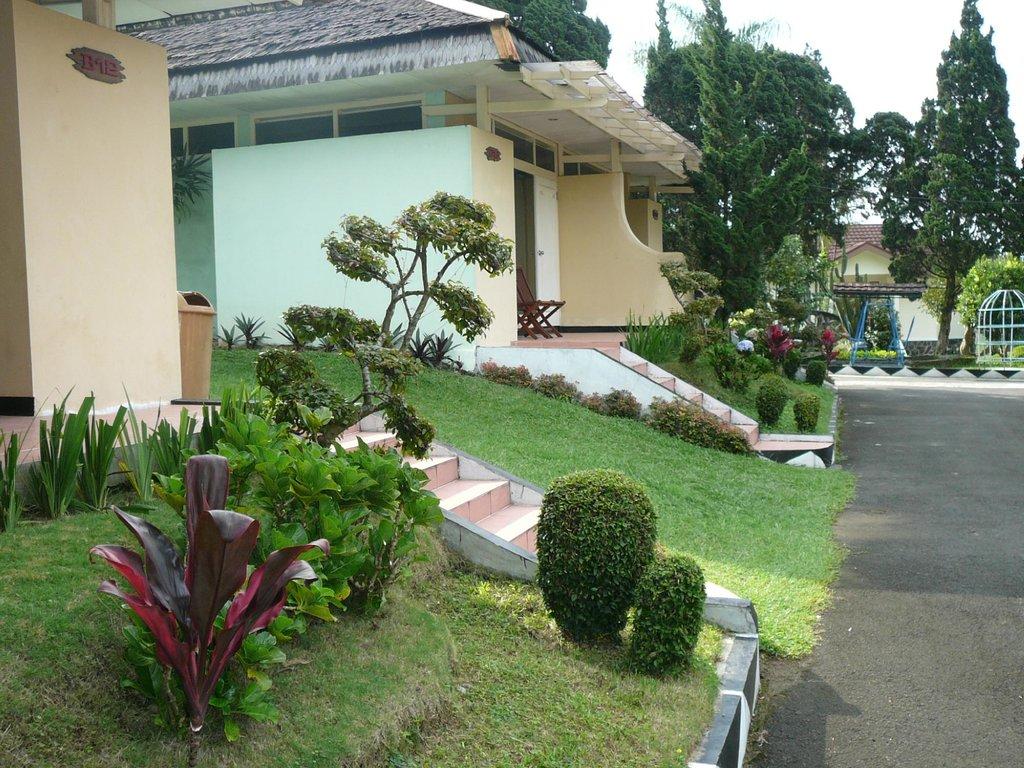Indo Alam