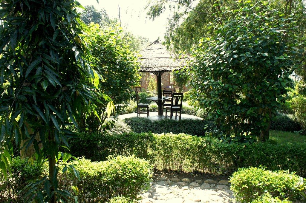 Bardia Wildlife Resort