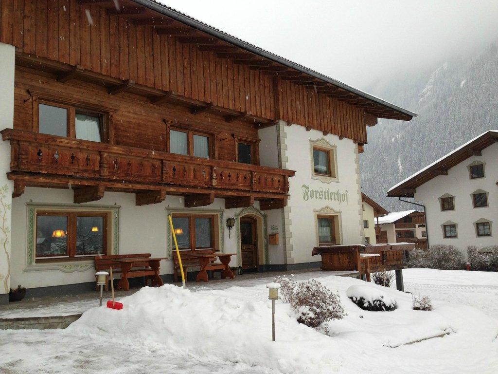 Bauernhof Forstlerhof