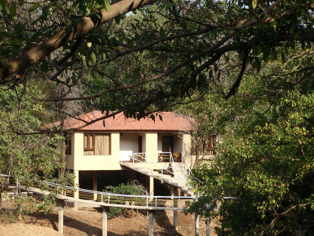 Muba Jungle Camp Nagzira Tiger Reserve
