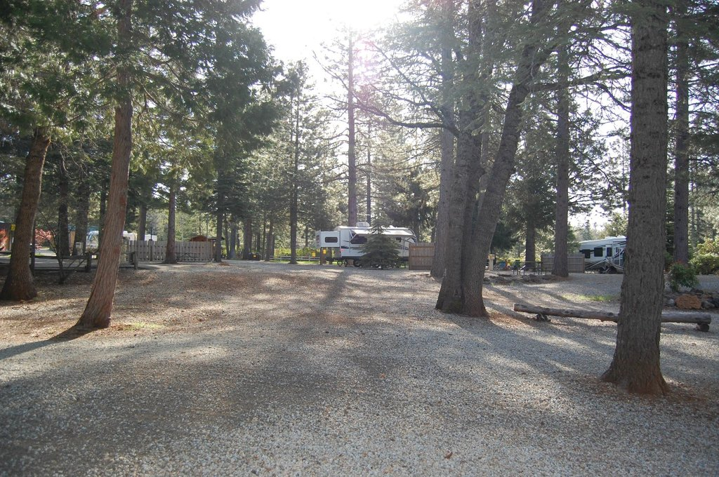 Mt. Lassen / Shingletown KOA