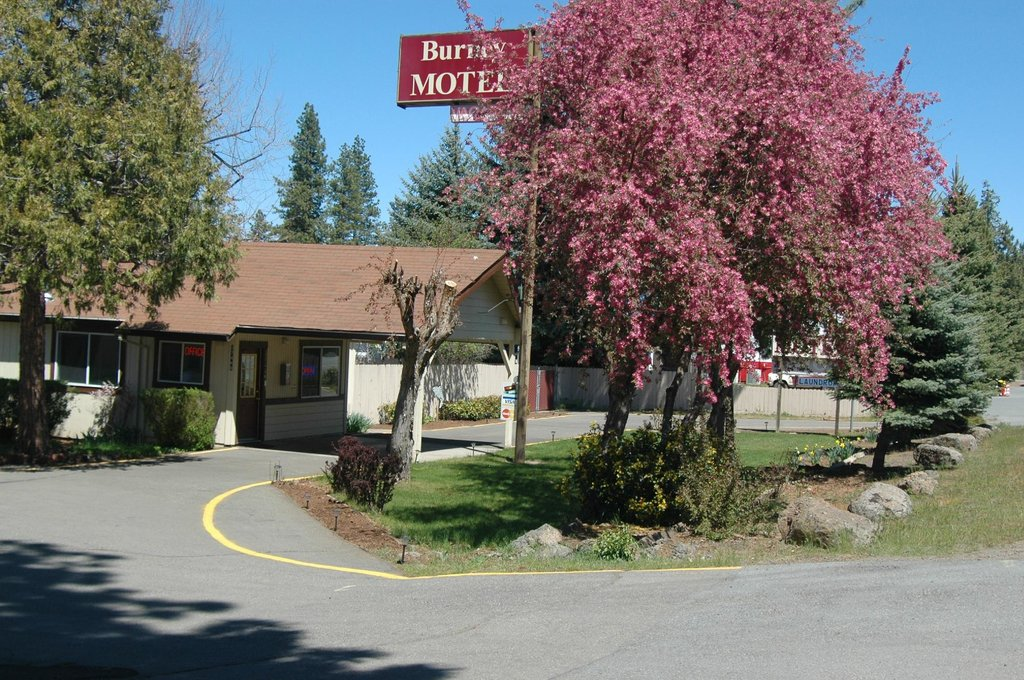 Burney Motel