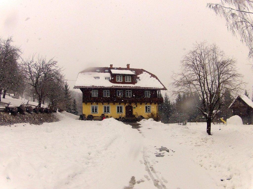 Bauernhof Walcherhof