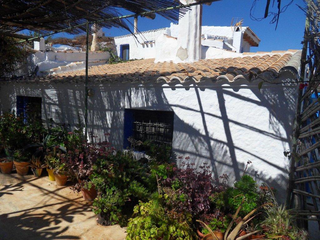 Casa Rural Aloe-Vera