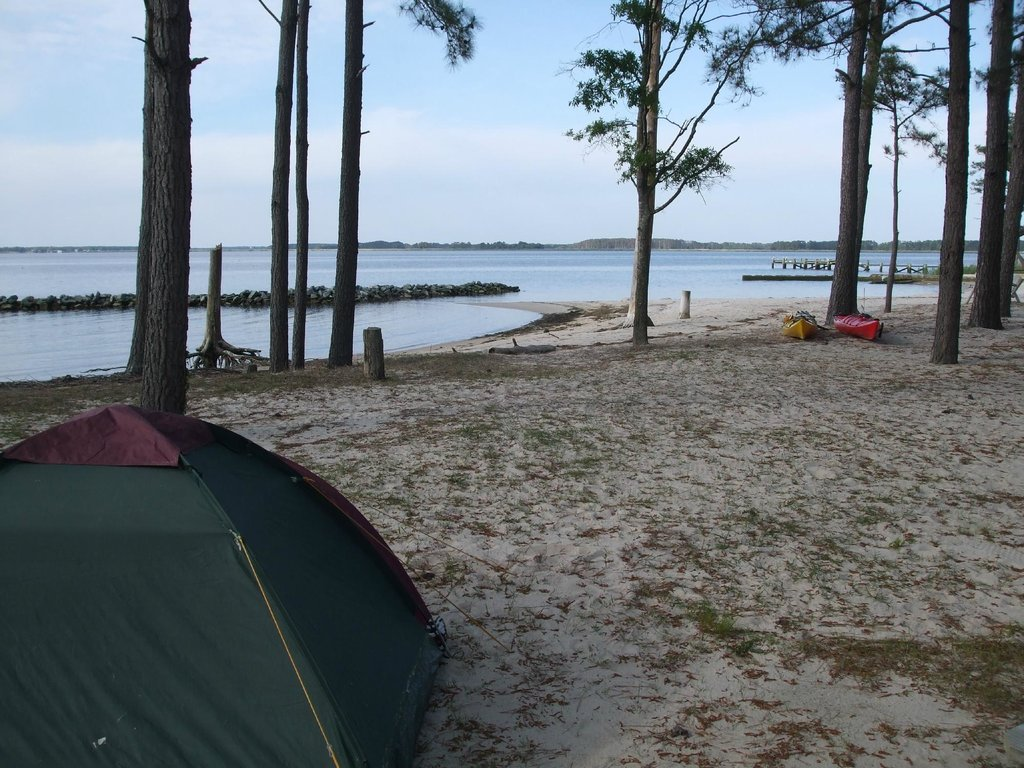 Tall Pines Harbor Campground