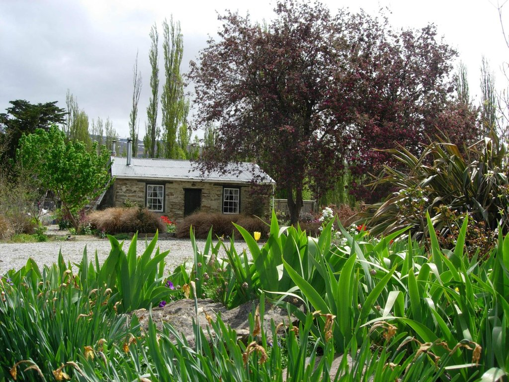 Paddy's Cottage