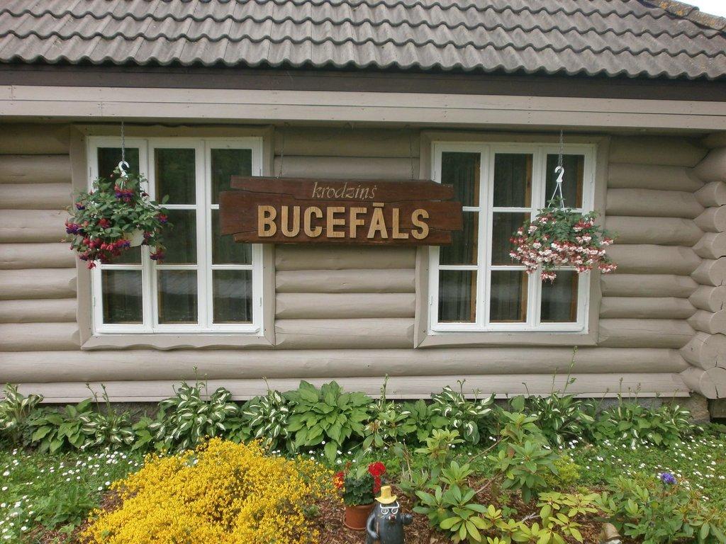 Guesthouse Bucefals